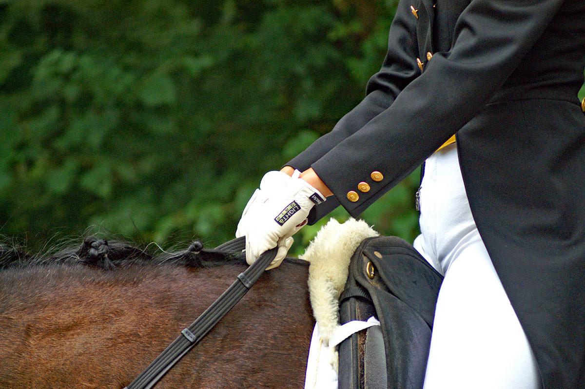 Susanne Müller schreibt unter anderem für den Westfälischen Pferdesportverband.